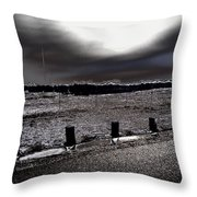 Park In The Moonlight Throw Pillow