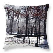 Park In The Snow Throw Pillow