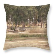Park Near The Source Of The Yarkon River Throw Pillow