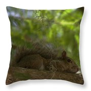 Park Ranger Throw Pillow by Sean Green