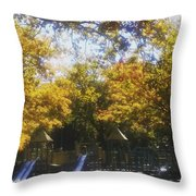 Park Slide Throw Pillow