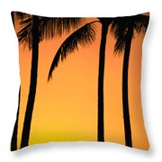 Park Stretch Throw Pillow