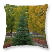 Park Trees Throw Pillow