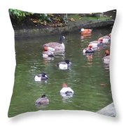 Park Waterfowl Throw Pillow