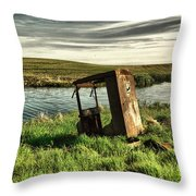 Parked By The Pond Throw Pillow