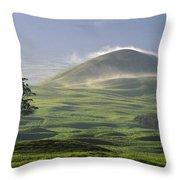 Parker Ranch Throw Pillow
