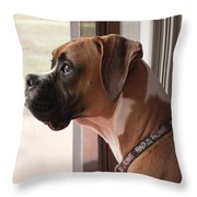Parker The Boxer Throw Pillow