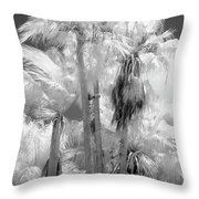 Parking Lot Palms 1 1 Throw Pillow