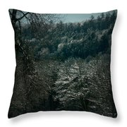 Parks Winter Glory Throw Pillow