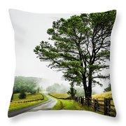 Parkway Mist Throw Pillow