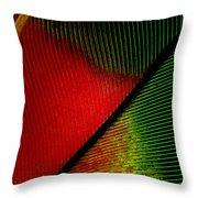 Parrot Feather Macro Throw Pillow