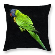 Parrot In Black Throw Pillow