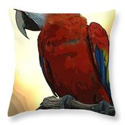 Parrot Watching Throw Pillow