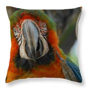 Parroting Information Throw Pillow