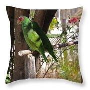 Parrots. Throw Pillow