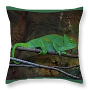 Parson's Chameleon Throw Pillow