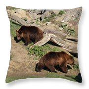 Part Company Throw Pillow
