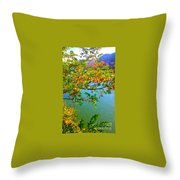 Parted By The Wind Throw Pillow