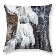 Partially Frozen Throw Pillow