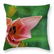 Partially Open Pink Lily Blossom Throw Pillow