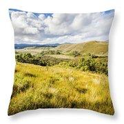 Parting Creek Regional Reserve Tasmania Throw Pillow