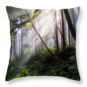 Parting Of The Mist Throw Pillow