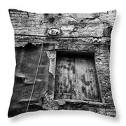 Partly Covered - Venice Throw Pillow