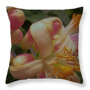Party Blooms Throw Pillow