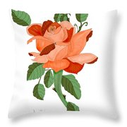 Party Colored Rose Throw Pillow