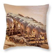 Party Of Eight  6973 Throw Pillow