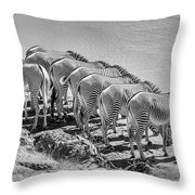 Party Of Eight  6973bw Throw Pillow