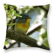 Parula In A Pear Tree Throw Pillow