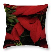 Pascua Throw Pillow