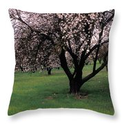 Paso Robles Orchard Throw Pillow