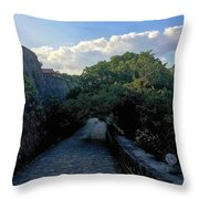 Passage To Beauty Throw Pillow