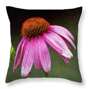 Passages Impasto Throw Pillow