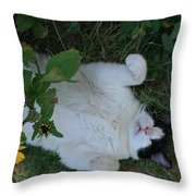 Passed Out Under The Daisies Throw Pillow
