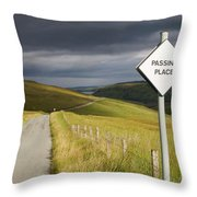 Passing Place Throw Pillow