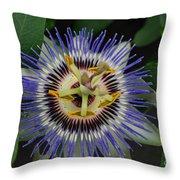 Passion Bloom Vi Throw Pillow