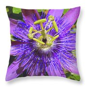 Passion Flower 2 Throw Pillow