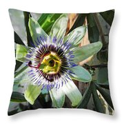 Passion Flower Close-up Throw Pillow