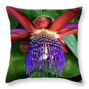 Passion Flower Ver. 13 Throw Pillow