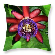 Passion Flower Ver. 15 Throw Pillow