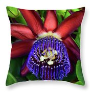 Passion Flower Ver. 17 Throw Pillow
