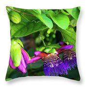 Passion Flower Ver. 18 Throw Pillow