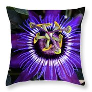 Passion Flower Ver. 4 Throw Pillow