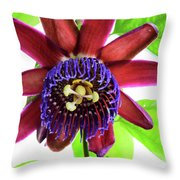 Passion Flower Ver. 5 Throw Pillow