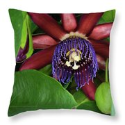 Passion Flower Ver. 8 Throw Pillow