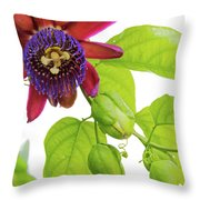 Passion Flower Ver. 9 Throw Pillow