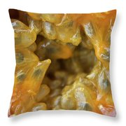 Passion Fruit In A Cut Throw Pillow